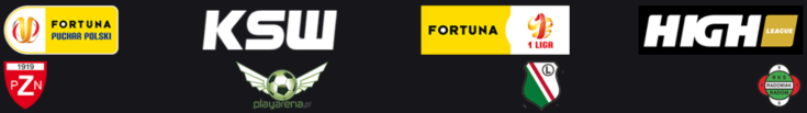 Fortuna - sponsoring