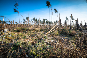 Zmiany klimatyczne - silny wiatr